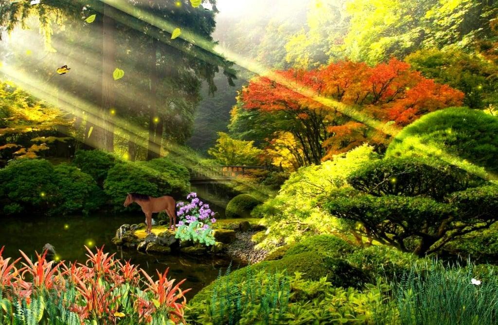 animated beautiful nature wallpaper wallpapersafari