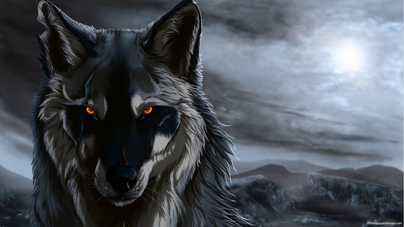 D Hd Wallpaper Com Anime Wolf Pictures Anime Wolf Pictures X