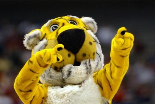 How To Missouri Tigers Athletics Mizzou College Sports Tigerboard 521x350