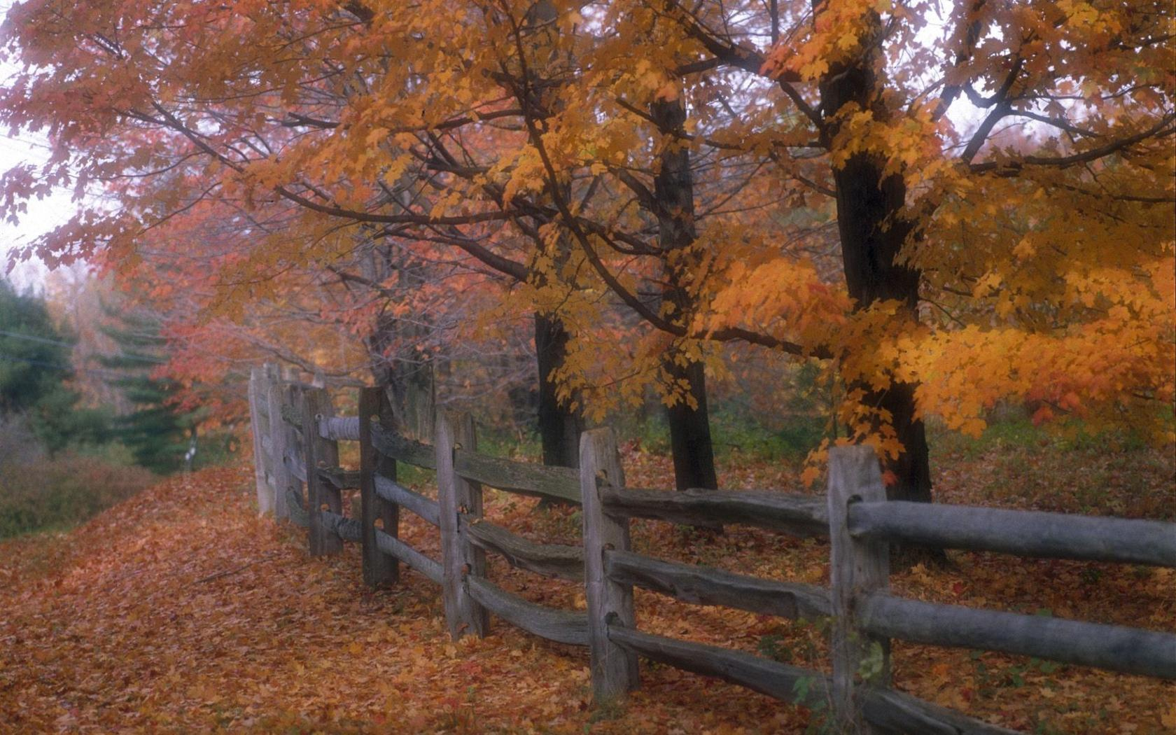Fence Autumn Nature Scenery Wallpapers For Desktop Backgrounds 1680x1050