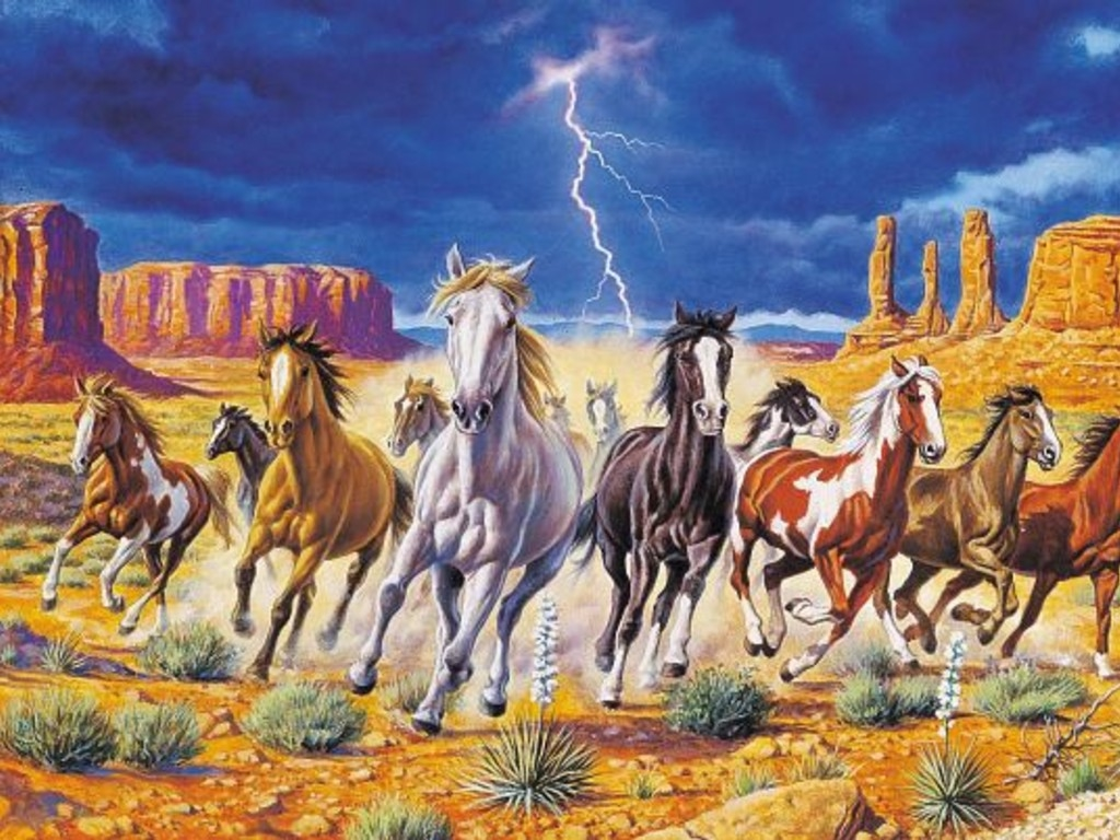 wild horses racing wallpaper - photo #19