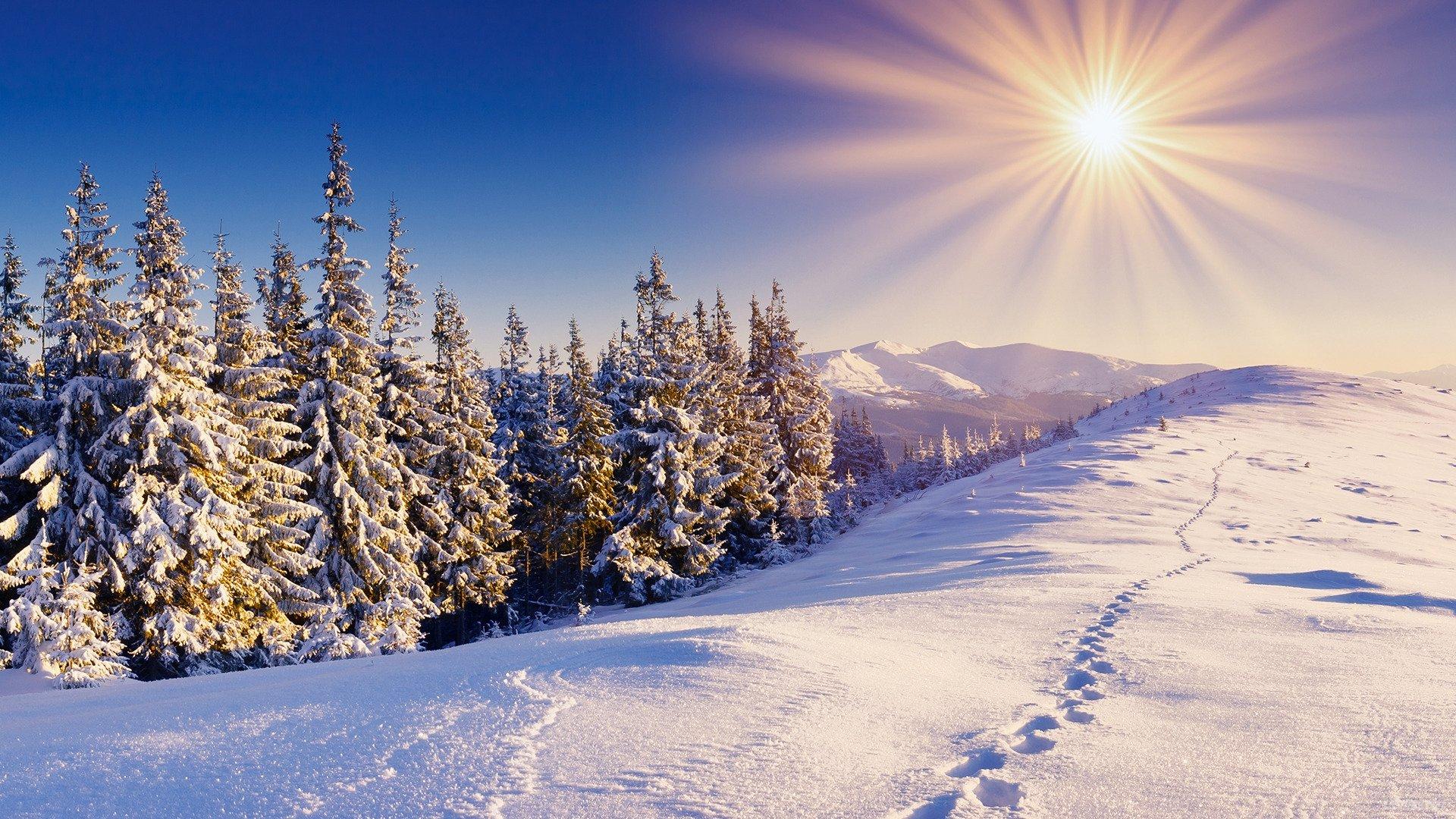 Winter Sun Wallpapers 1920x1080