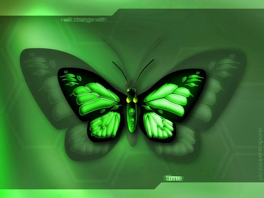 live butterfly wallpaper   beautiful desktop wallpapers 2014 1024x768