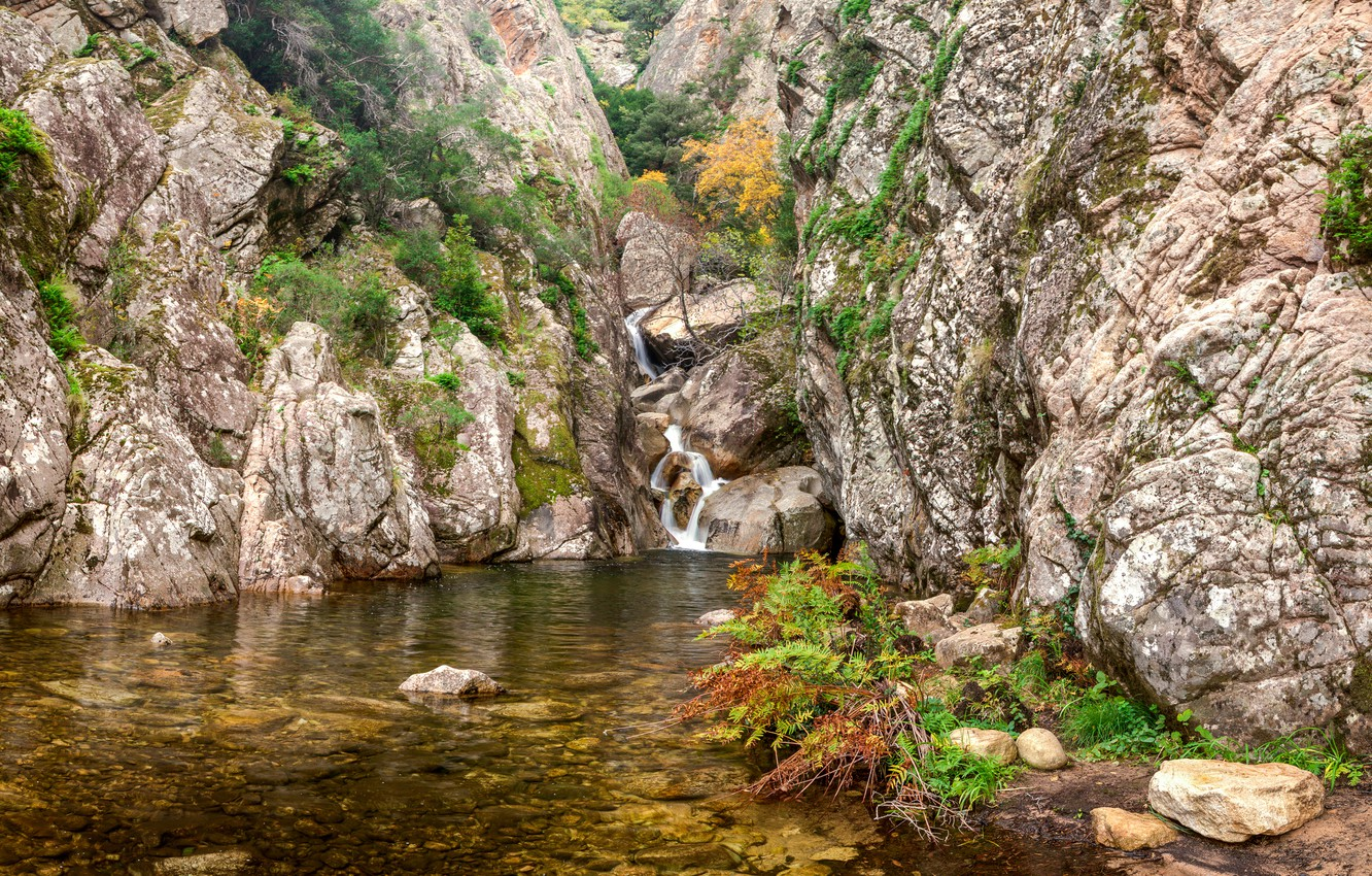 Wallpaper stream stones rocks France waterfall the bushes 1332x850