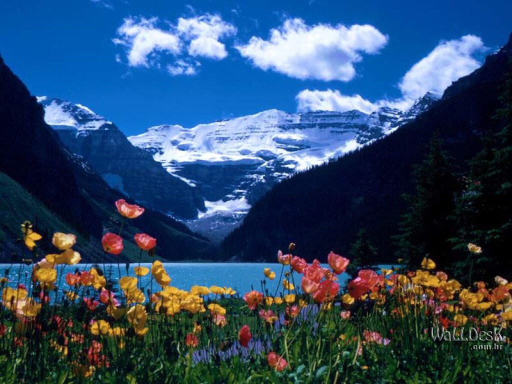 louise canada wallpaper pictures of lake louise canada download this 1024x768