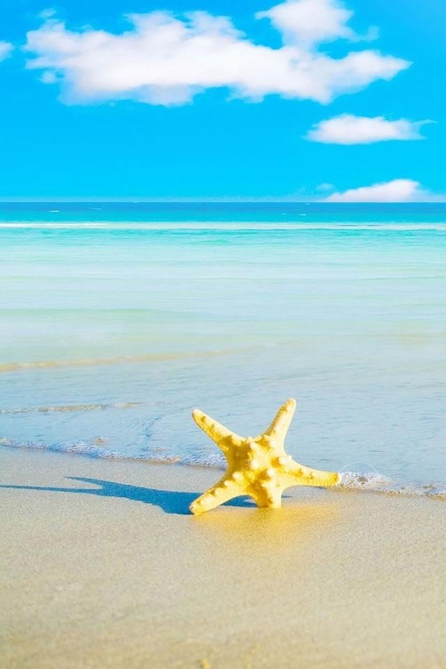 Maldives Summer Beach iPhone HD Wallpaper, iPhone HD Wallpaper ...