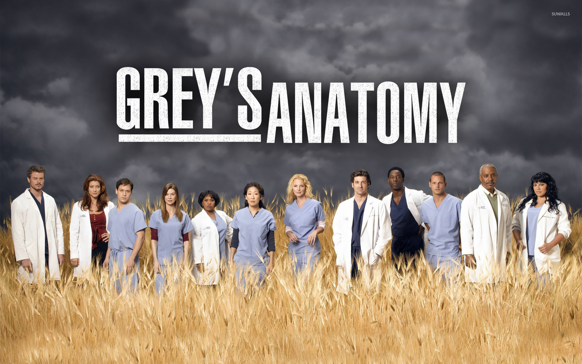 Greys Anatomy Wallpaper 11   1920 X 1200 stmednet 1920x1200
