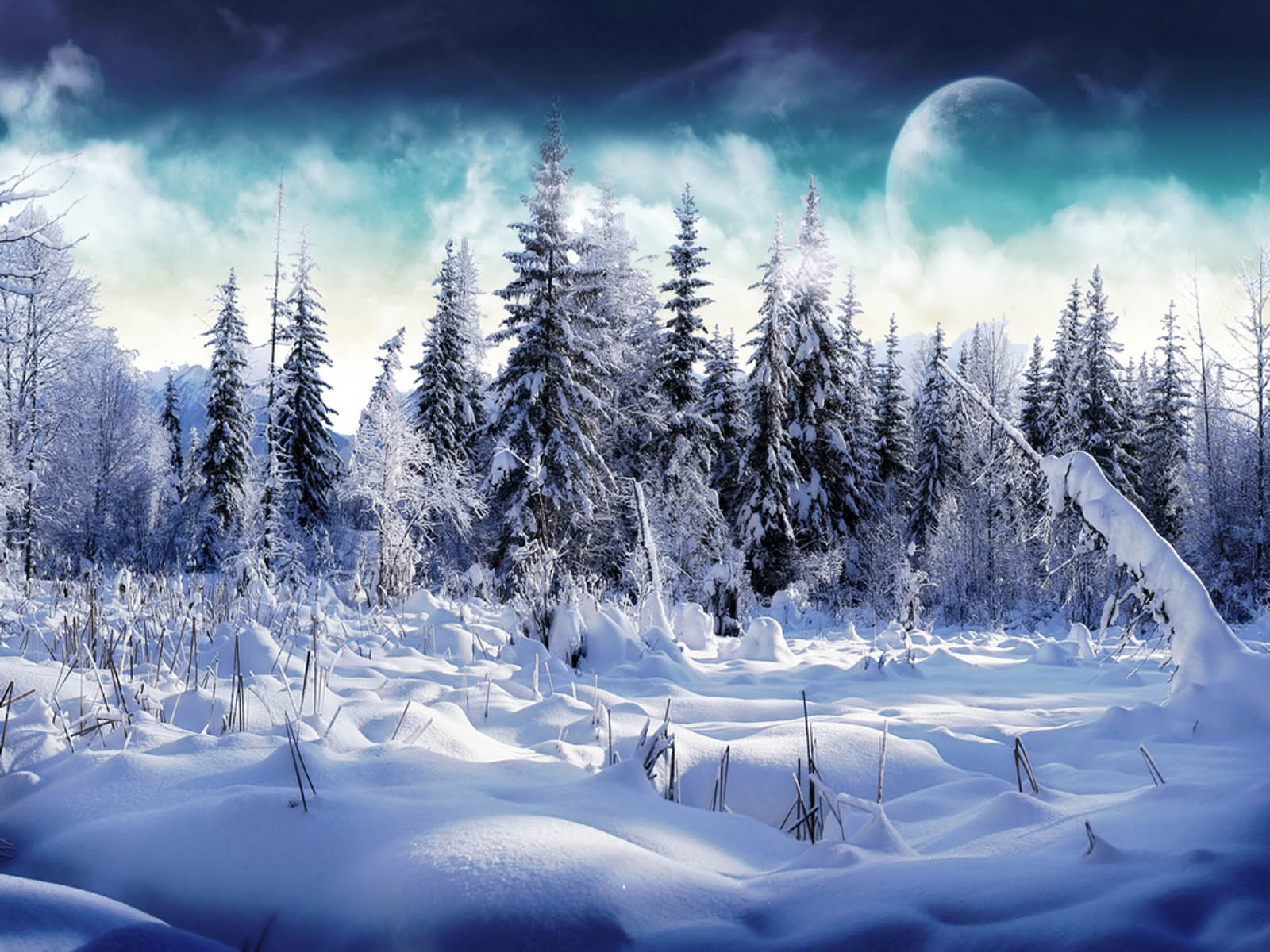 Snow Wallpapers Desktop Backgrounds 1600x1200