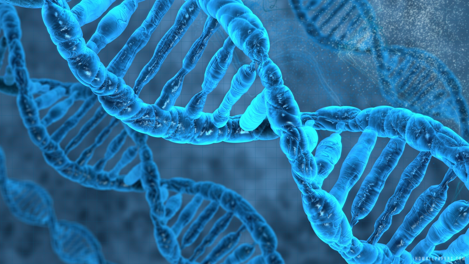 DNA Molecule HD Wallpaper   iHD Wallpapers 1920x1080