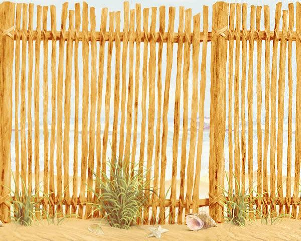 Beach Wall Accent Border   Ocean Fence Wallpaper Accent Mural 600x480