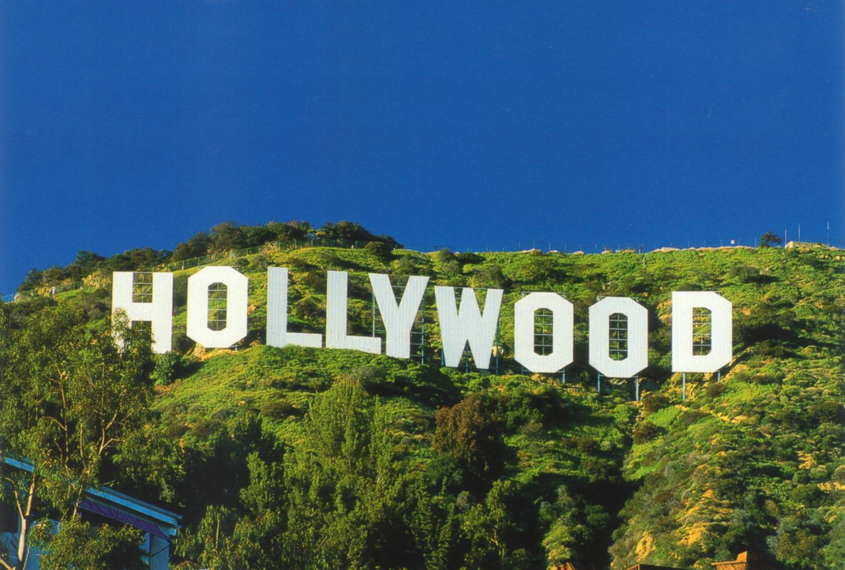 Hollywood Sign Wallpapers 1677x1132