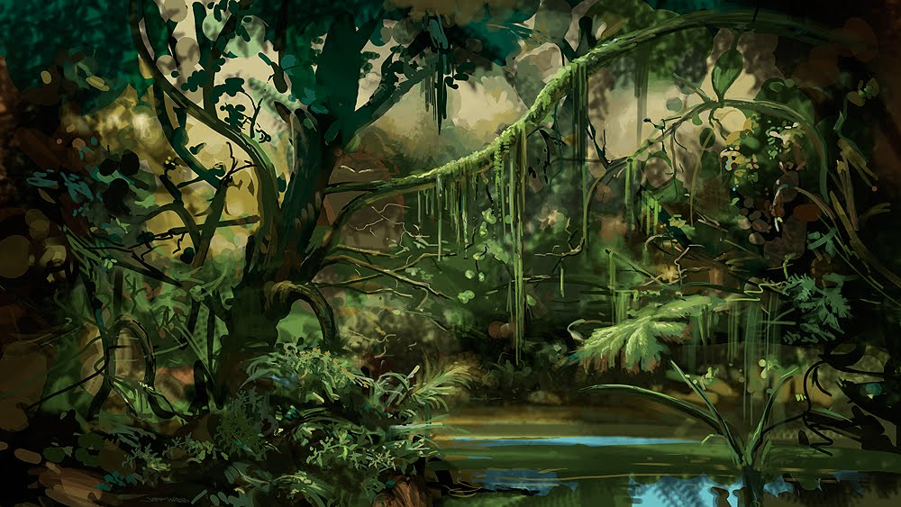Beautiful Jungle Nature Background HD Wallpapers wallpaperslinkcom 1000x563