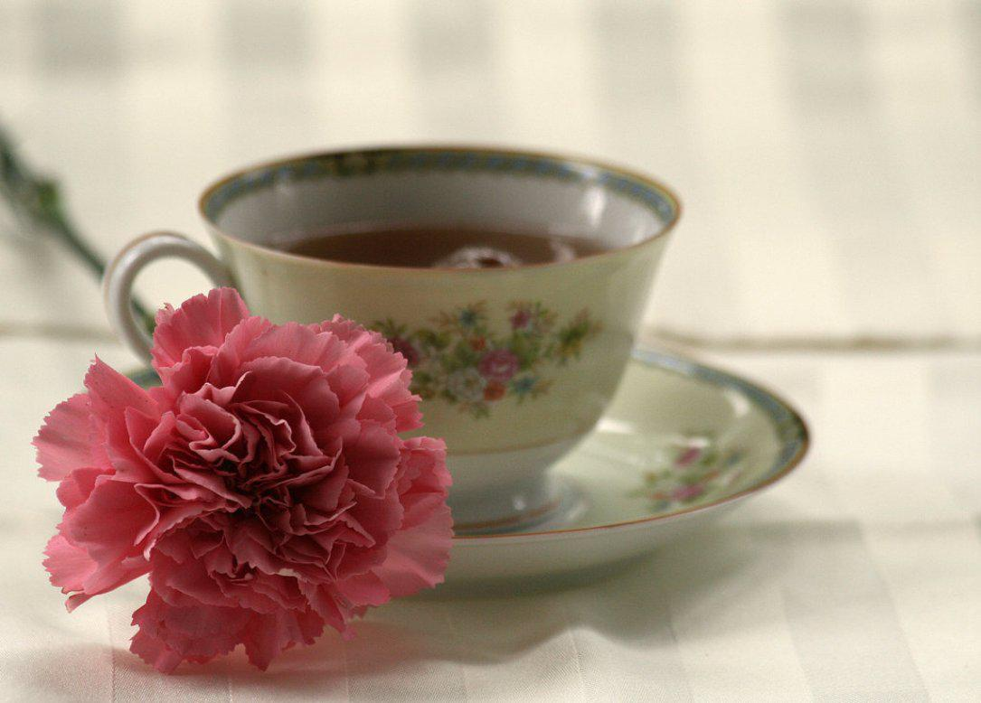 Cup of tea   97553   High Quality and Resolution Wallpapers on 1085x778