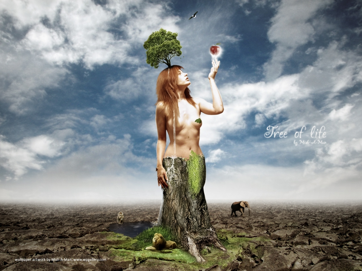 Tree of life   1152 x 864 wallpaper   Wallpaper Gallery 1152x864