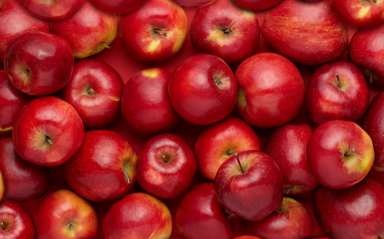 Red Apple Fruit Wallpaper Food   apple wallpaper 2880x1800