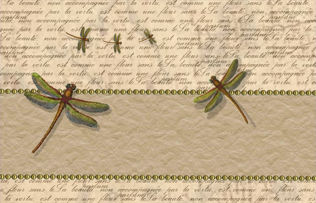 Dragonfly Wallpapers 1004x647