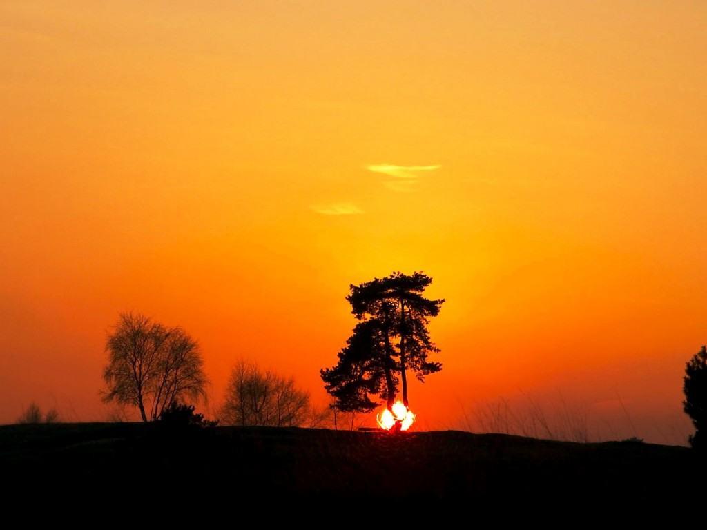 Wallpapers Backgrounds   Best Backgrounds Desktop Beautiful Sunset 1024x768