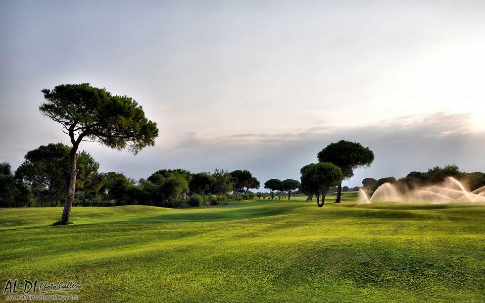 Golf course 960x600