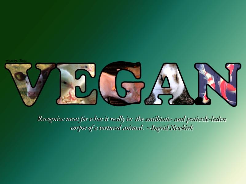 Vegan Desktop Background2 by starlight lullaby 800x600