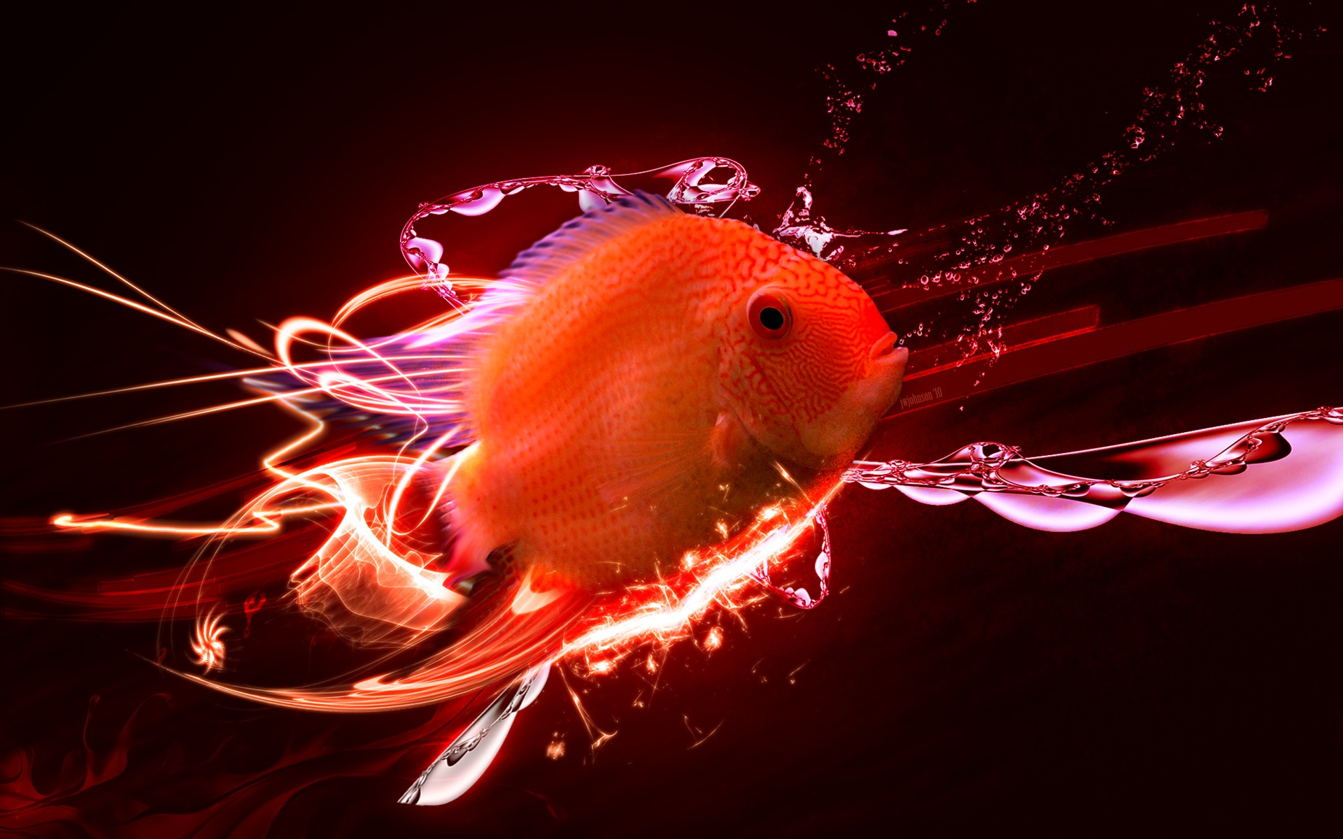 fish marlin desktop 1920x1200 - photo #46