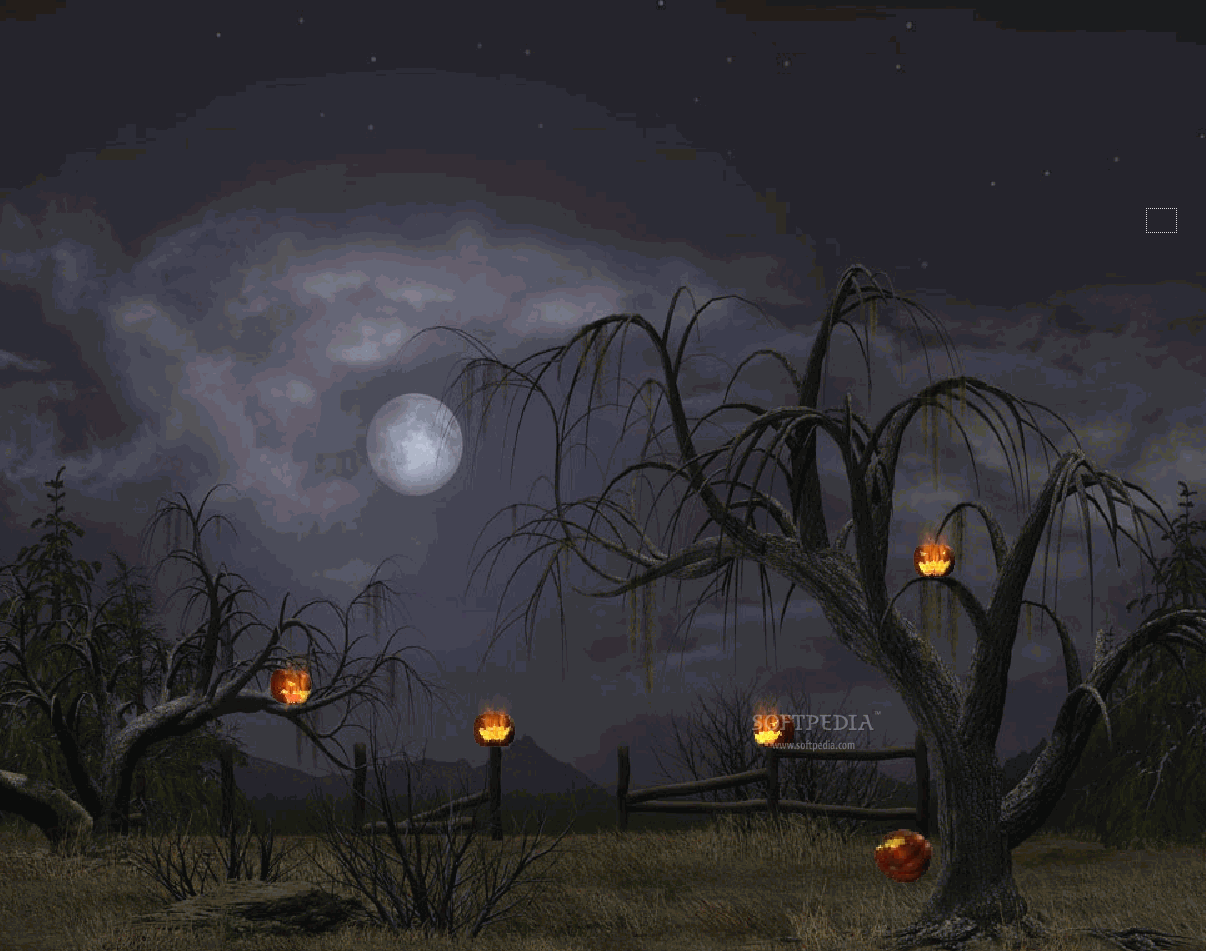 download Halloween Night Animated Wallpaper This is the image 1206x951