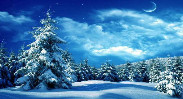 the form below to delete this wonderful winter night scene wallpapers 590x320