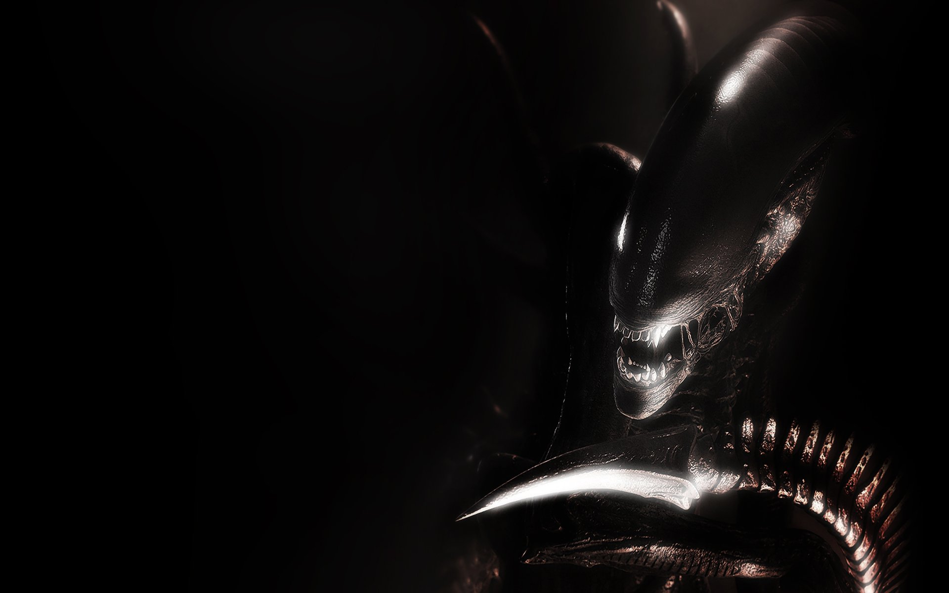 wallpapers wednesday animated aliens alien 1920x1200