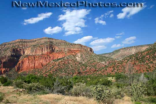 Red rocks green shrubs and a vivid blue sky make up the classic 540x360