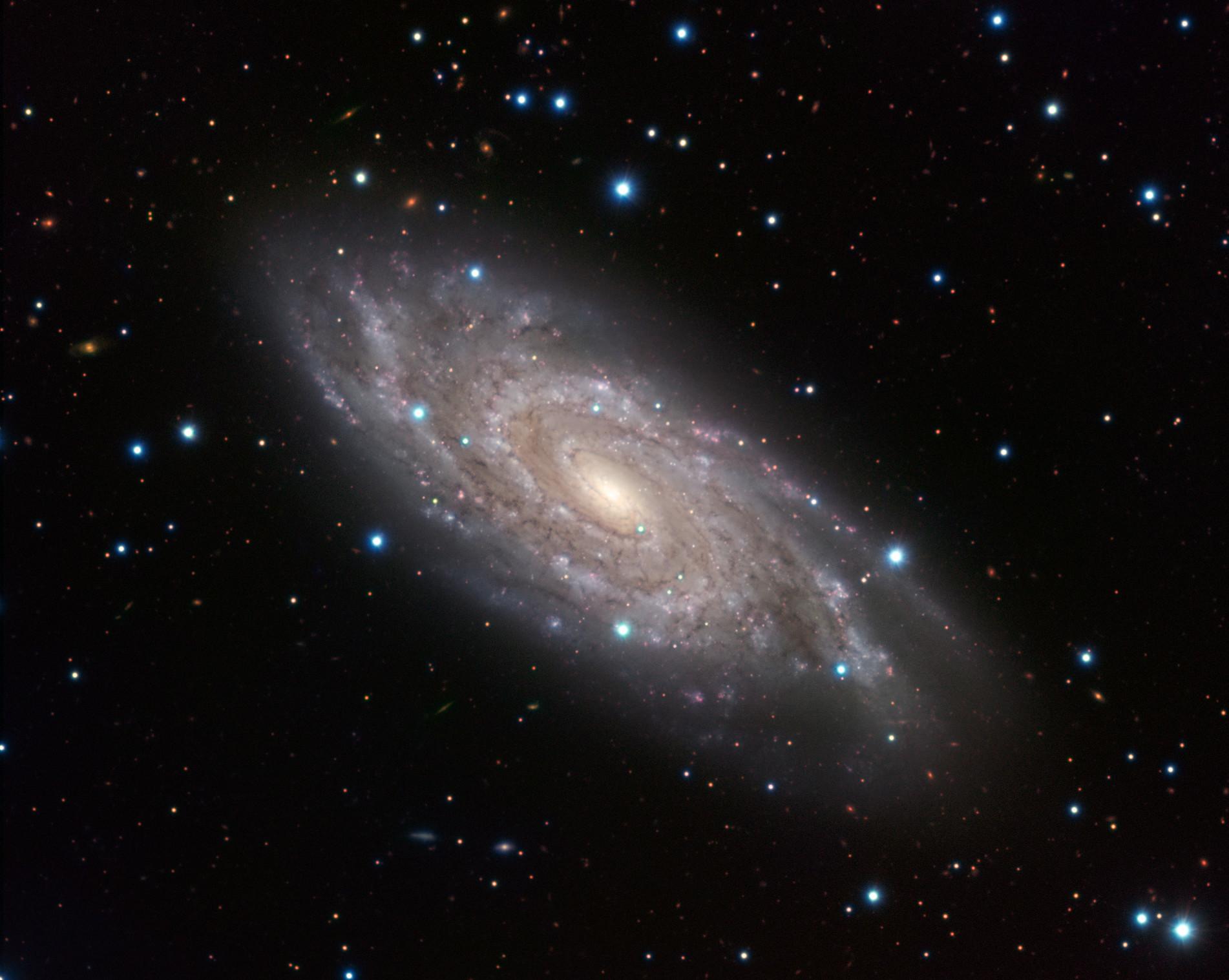 The Blinking Galaxy ESO 1902x1517