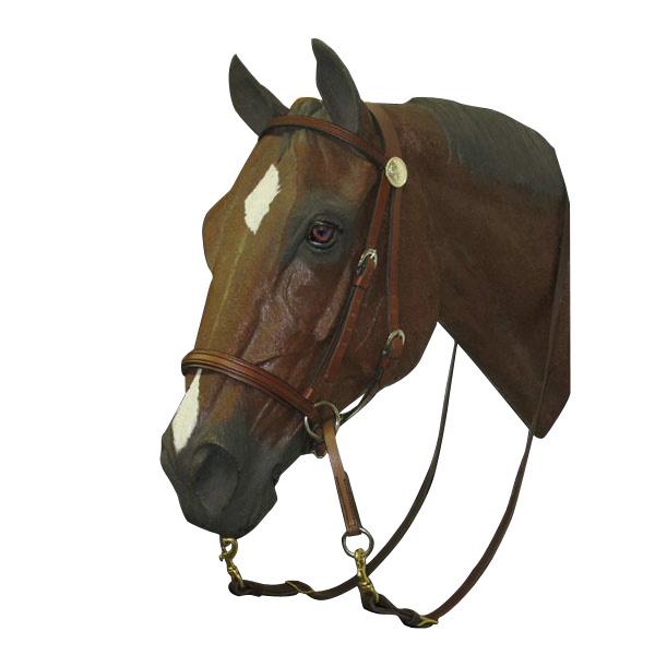 bridles bitless bridle riding western leather bitless bridle Search 600x600