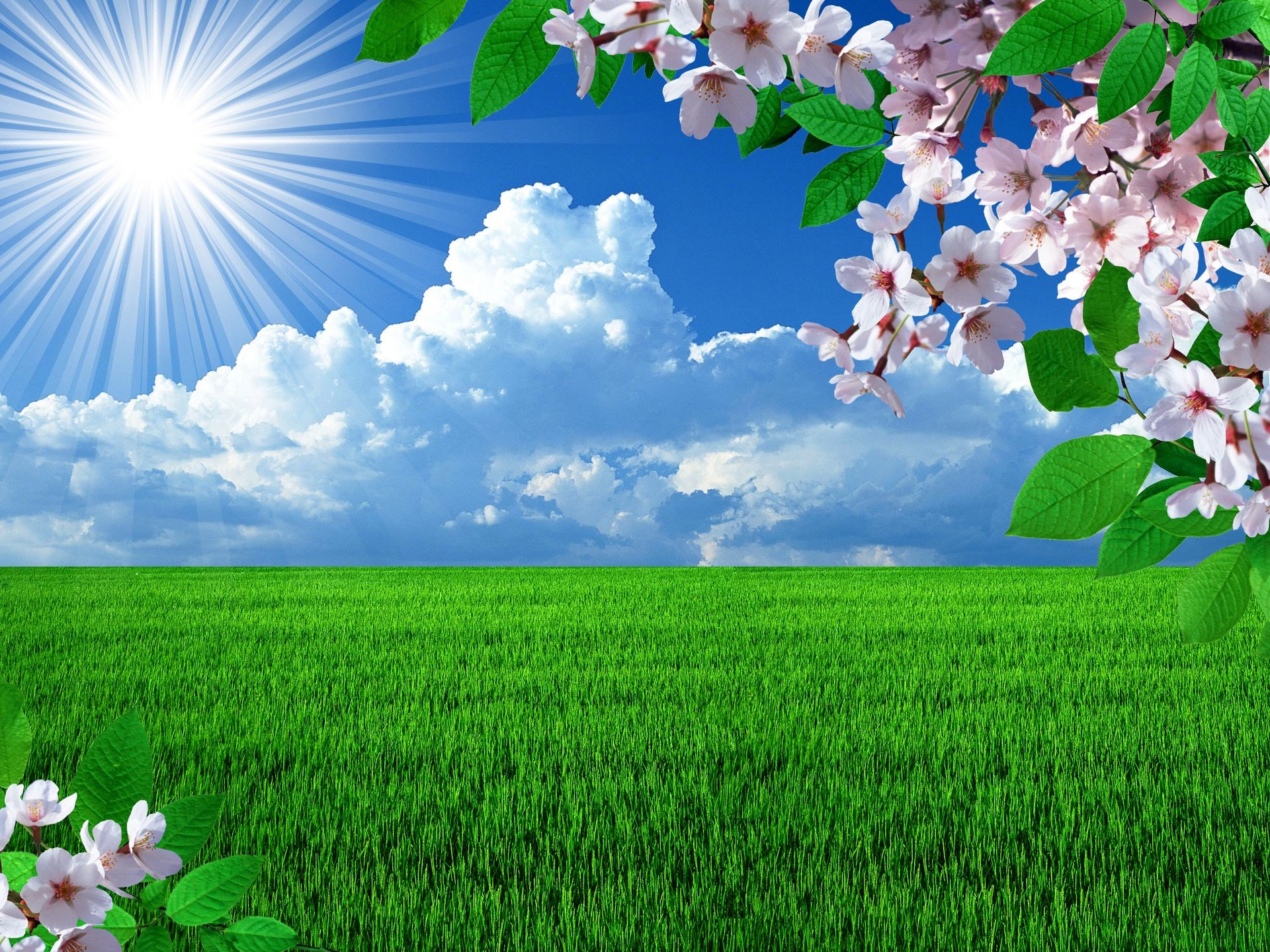 83 Springtime Desktop Wallpapers on WallpaperPlay 1920x1440
