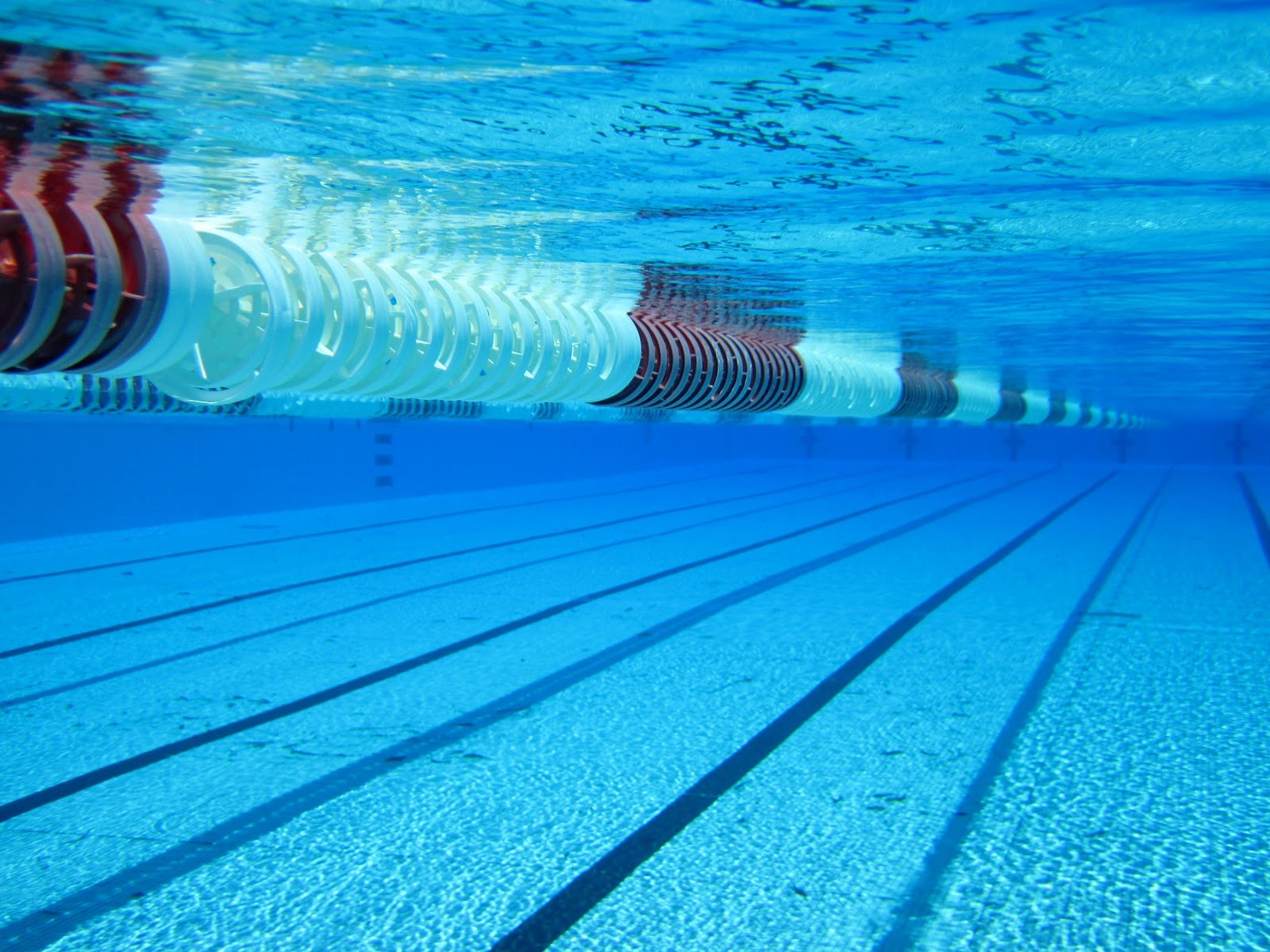 Olympic swimming pool underwater for Swimming images