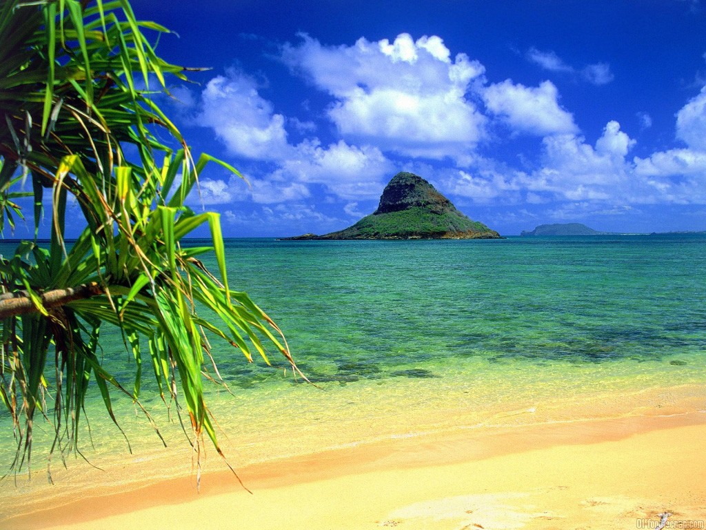 Free Download Fond Ecran Ile Paradisiaque 45914 Wallpaper