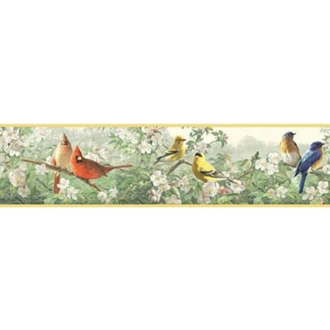BIRDS THROUGHOUT THE TREES WALLPAPER BORDER   All 4 Walls Wallpaper 650x650