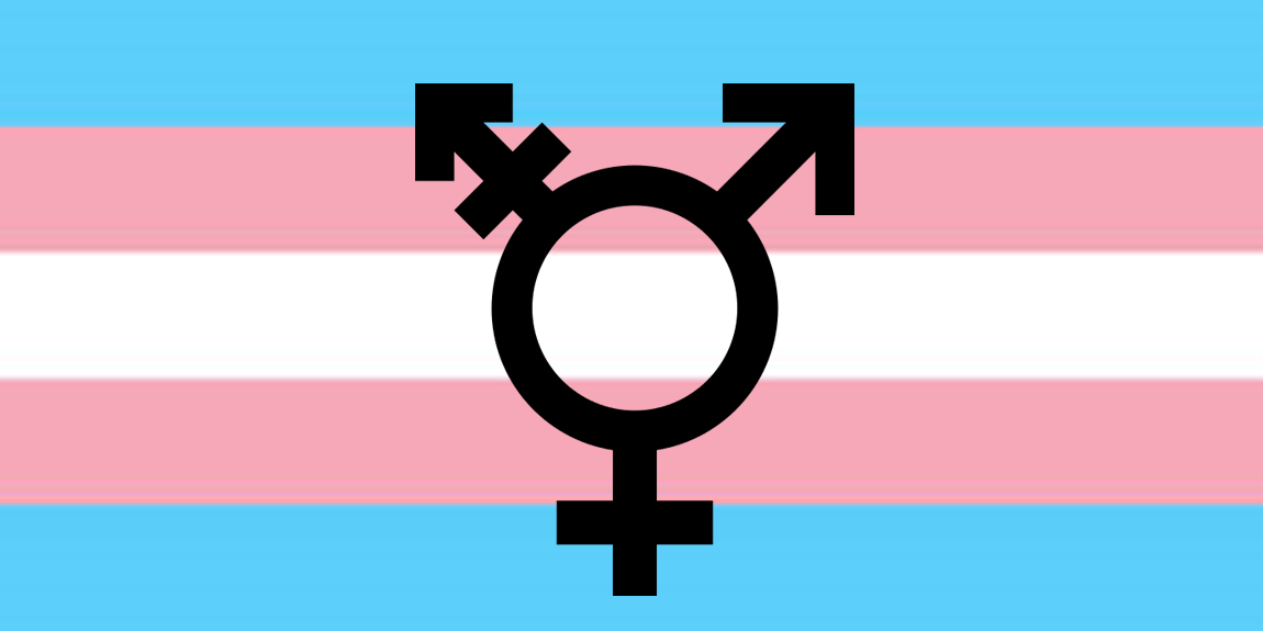 Free Download Trans Flag Fotolipcom Rich Image And Wallpaper