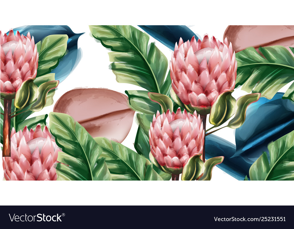 Ginger flowers tropic background watercolor Vector Image 1000x780