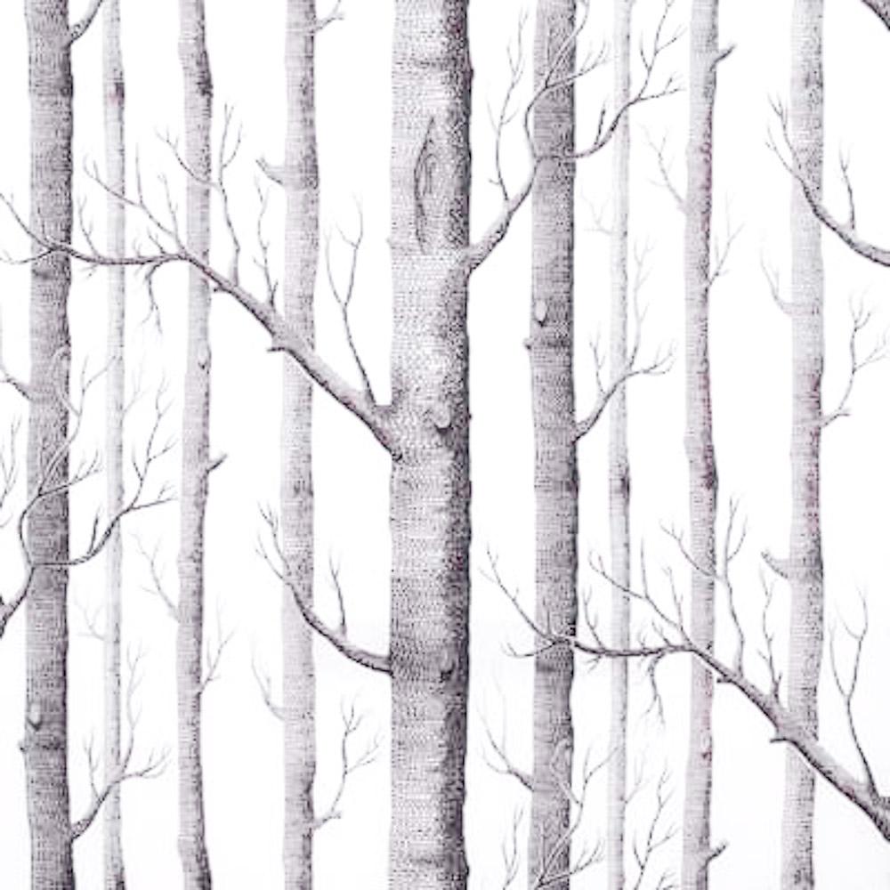 Fine Decor Realistic Wallpaper Decor Birch Tree Neutral 1000x1000