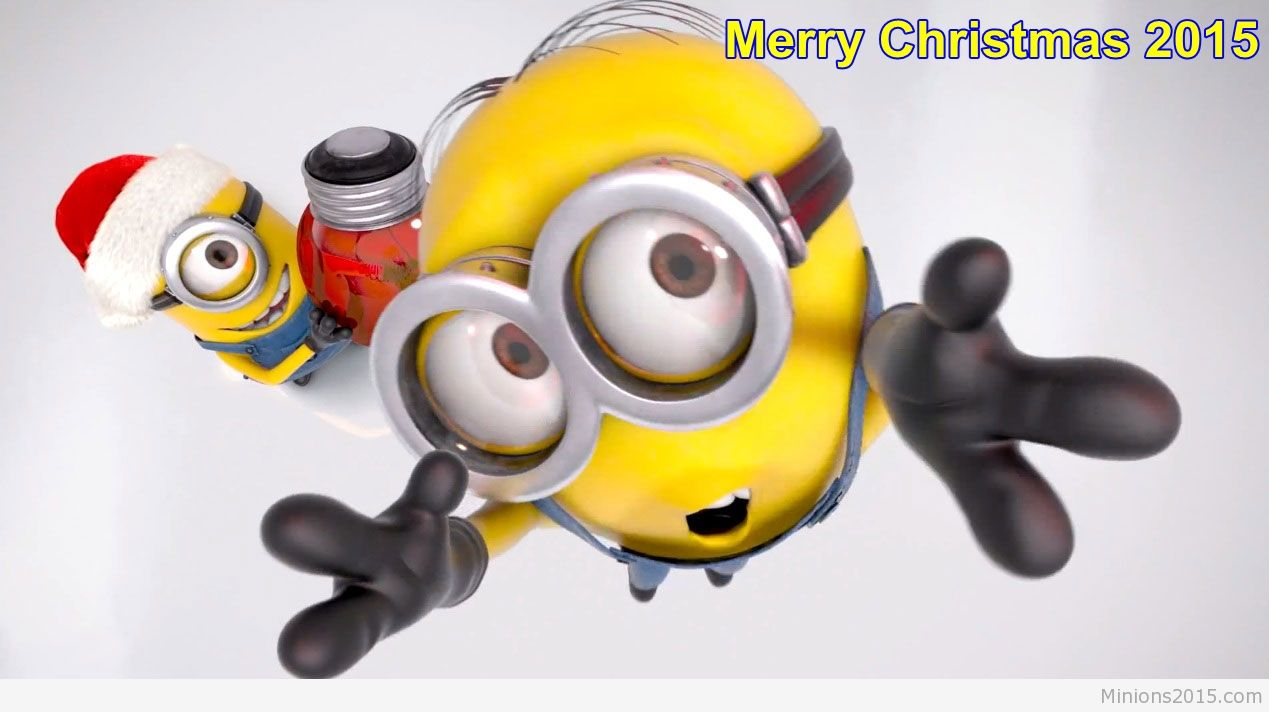 Best Minion Wallpaper Android For Desktop 1269x712