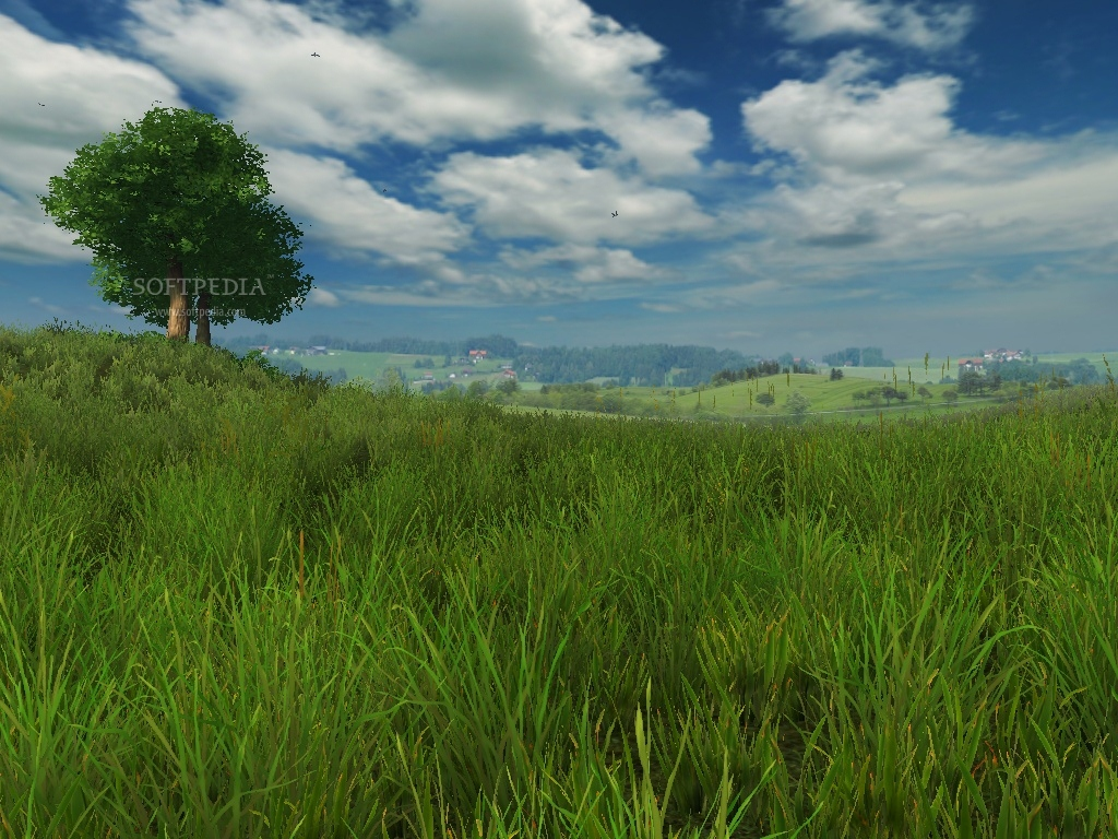 Grassland 3D Screensaver and Animated Wallpaper   This is the way 1024x768