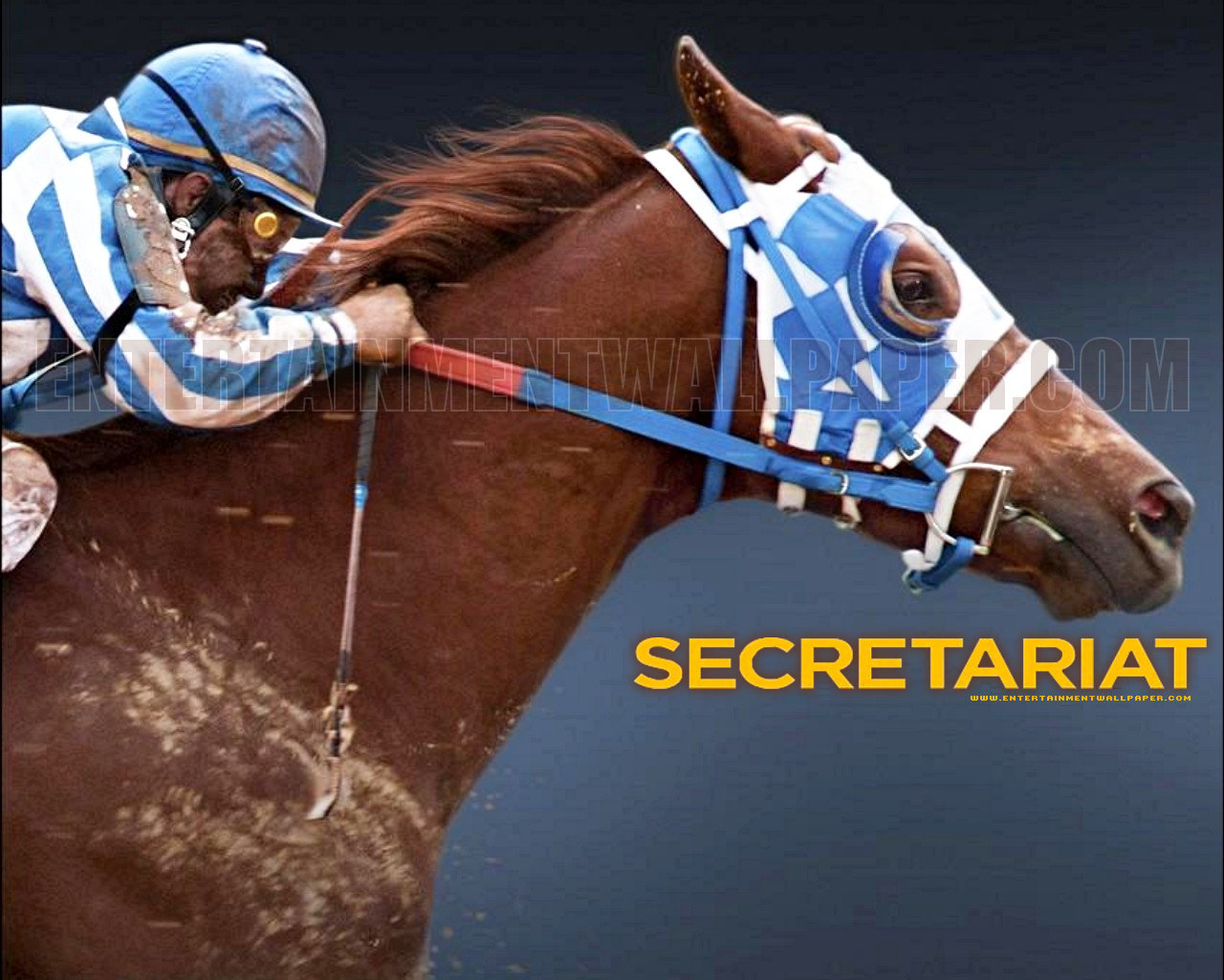 secretariat wallpaper-#6