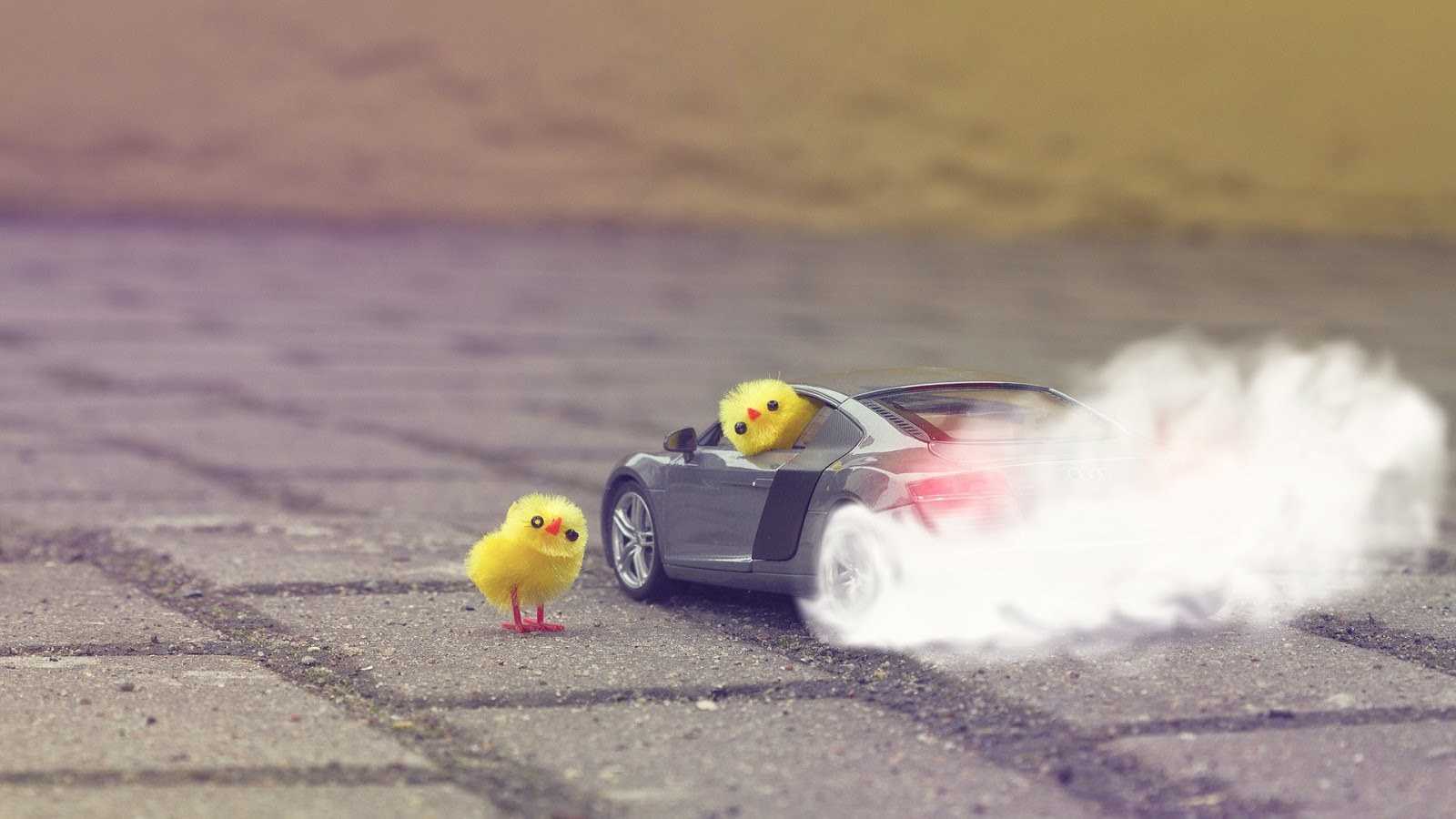 Chicken Toys Drift Car   Best Wallpapers 1600x900