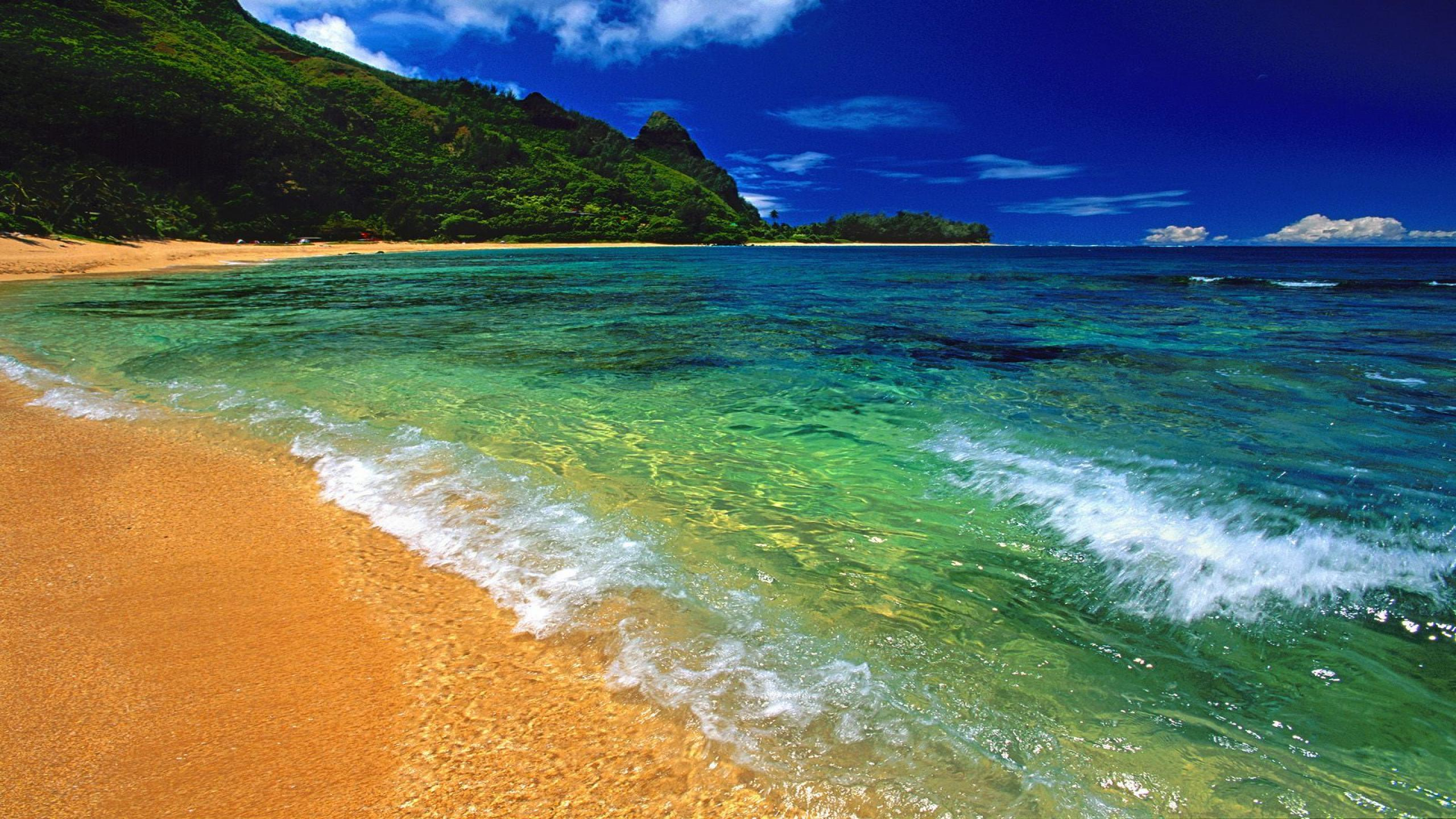 Best Beach HD Wallpapers for all resolution. Free HD 2560x1440 Beach ...