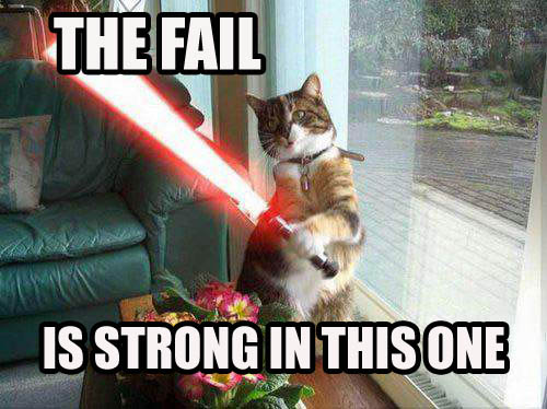 Epic Funny Cat Fails 12 Hd Wallpaper   Funnypictureorg 500x374