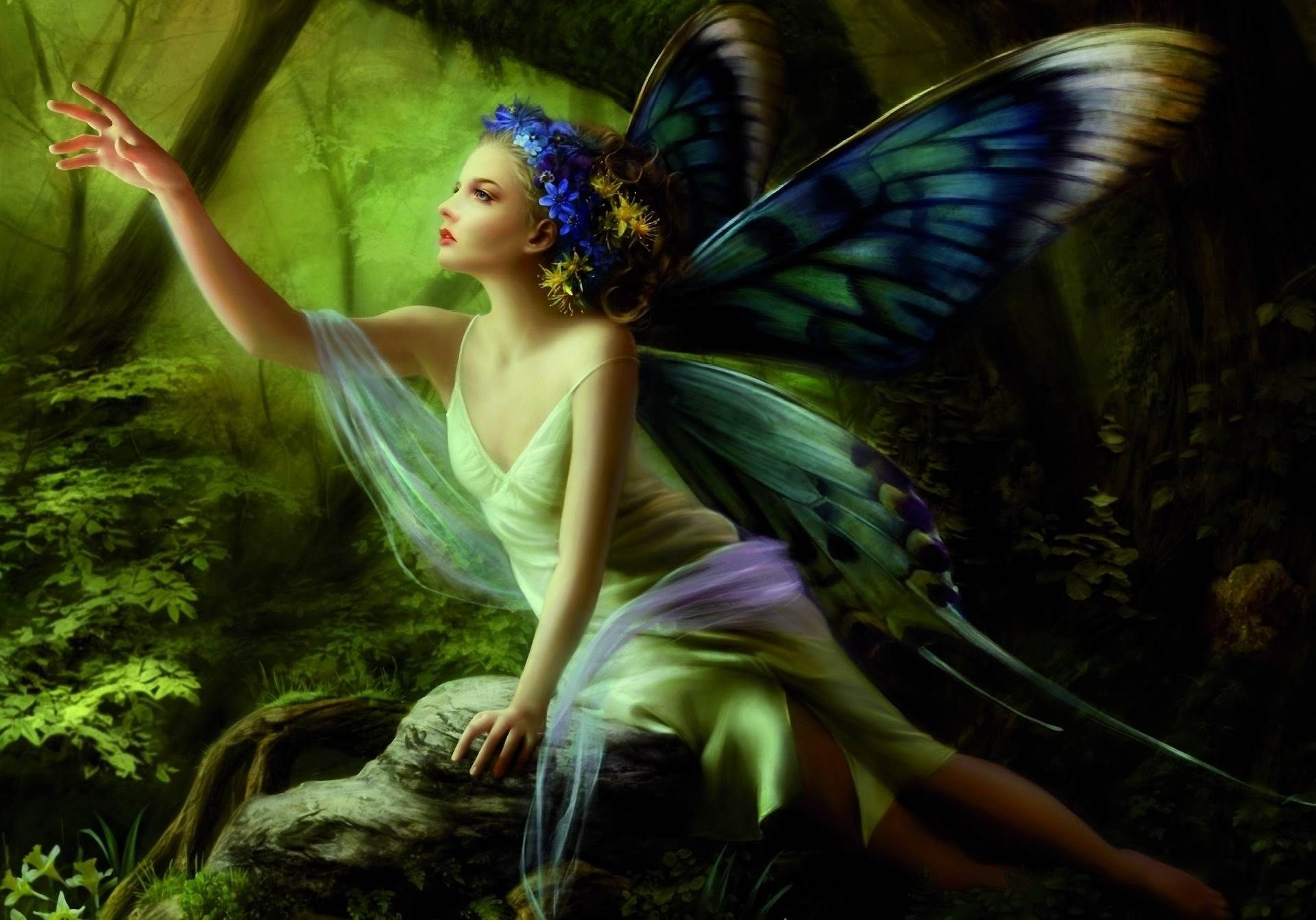 61 Fairies Wallpapers on WallpaperPlay 1920x1343