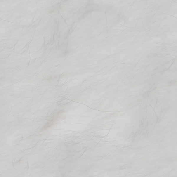 white fur subtle white fur seamless tile with thin dark hairs my cat s 600x600