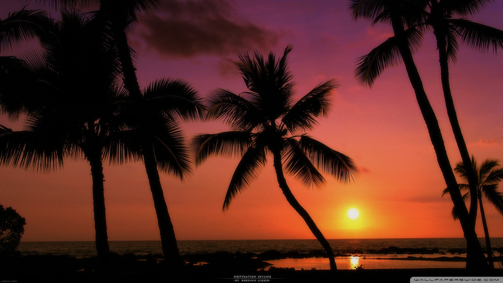 Tropical Beach Sunset wallpaper   856650 1920x1080