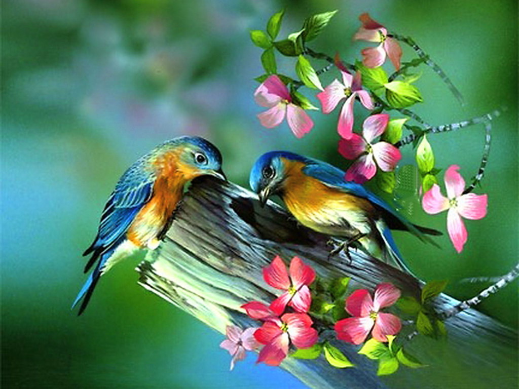 Spring Live Wallpaper Wallpapersafari