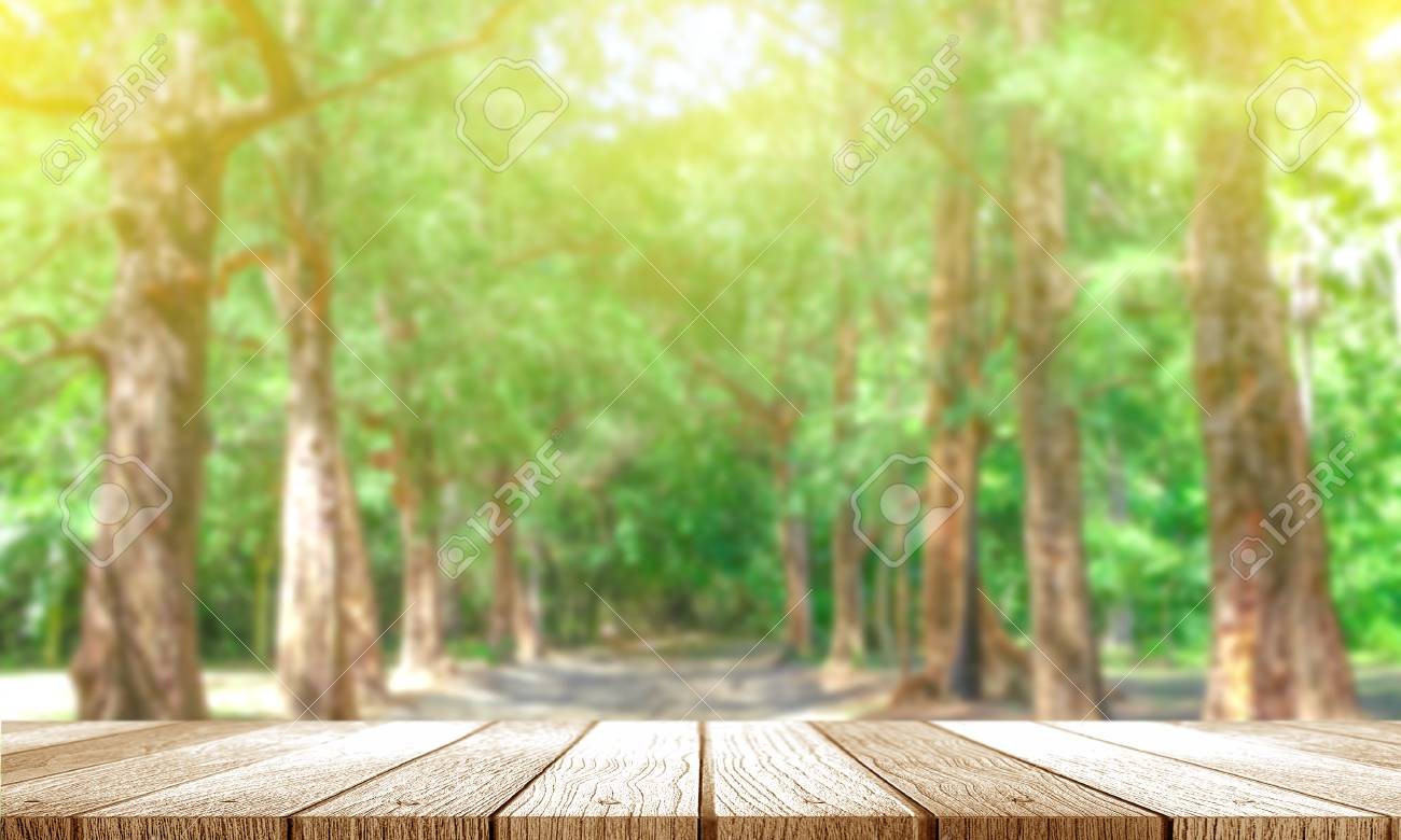 Wooden Tabletop With Fresh Tree Green Nature Blurred Background 1300x780
