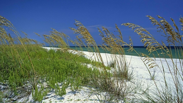 florida keys sea 1920x1080 wallpaper Beaches Wallpapers 600x337