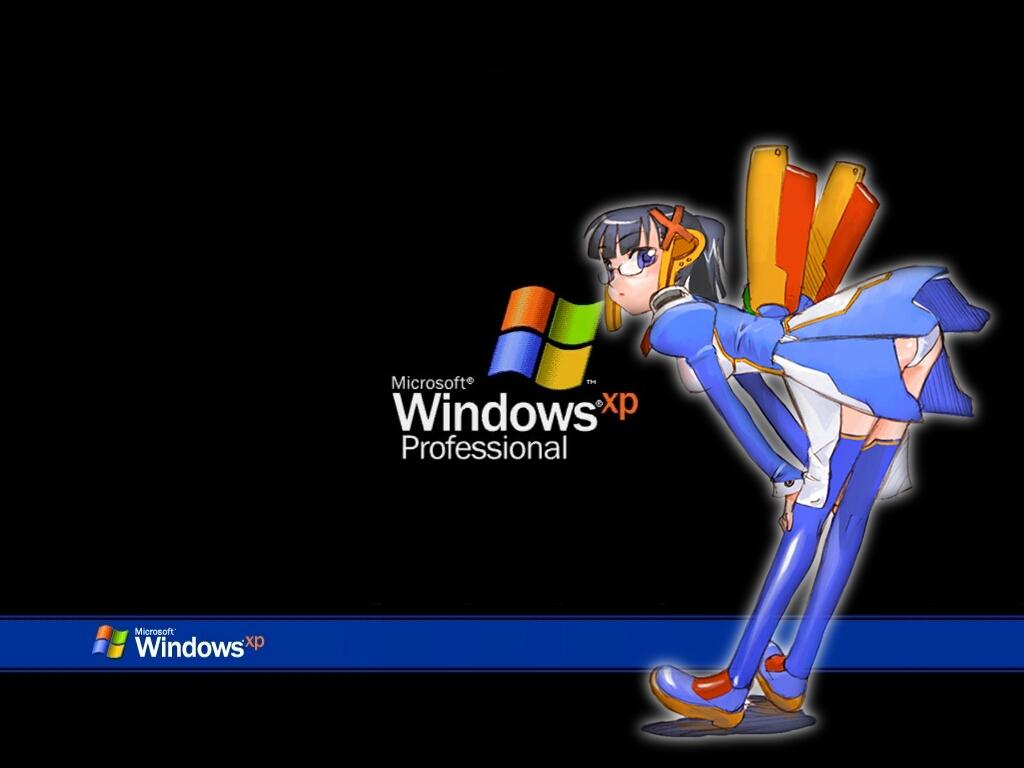 Microsoft Windows XP Professional   Wallpaper 31071 1024x768
